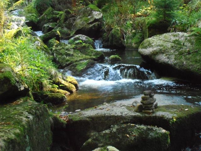 Bayerischer Wald Element Wasser