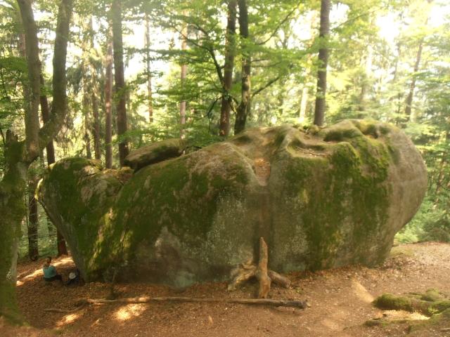 Bayerischer Wald Schalenstein