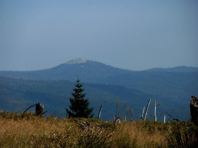 Bayerischer Wald Lusen