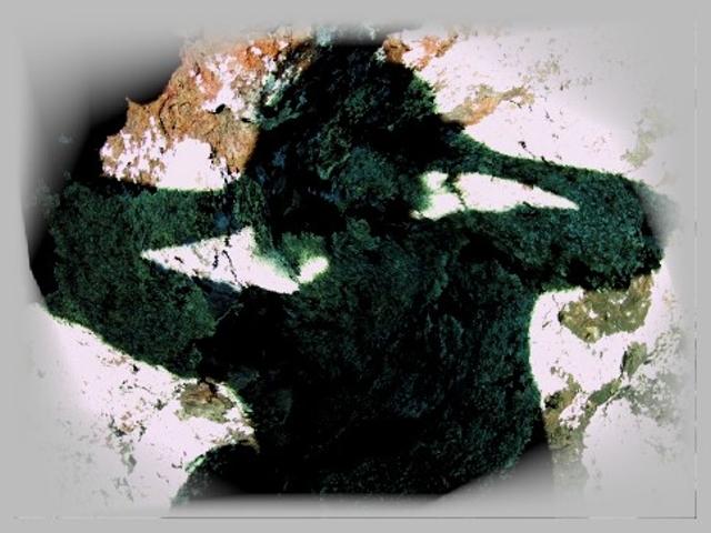 Geomantie Schamanismus Schattentanz