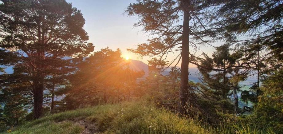 Bayern Alpen Sonnenuntergang
